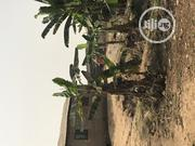Half Plot of Land for Sale at Mokore | Land & Plots For Sale for sale in Ogun State, Ifo