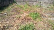 Land for Sale at Arepo Ifo | Land & Plots For Sale for sale in Ogun State, Ifo