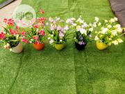 Mini Cup Flowers For Garden Decor | Landscaping & Gardening Services for sale in Lagos State, Ikeja