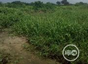 540m2 of Land for Sale at Sangotedo Lekki Epe Express Way. | Land & Plots For Sale for sale in Lagos State, Ibeju