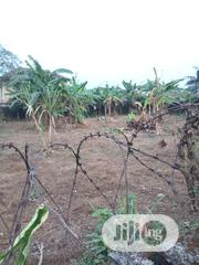 Genuine 4plot of Land With Good Light in Rumuhaolu Off Rumuokoro PH | Land & Plots For Sale for sale in Rivers State, Port-Harcourt