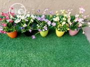 Beautiful Mini Cup Flowers For Office Decor | Landscaping & Gardening Services for sale in Lagos State, Ikeja