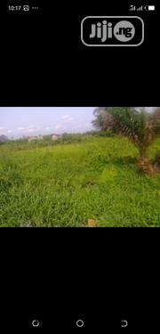 Virgin Lands for Sale | Land & Plots For Sale for sale in Abuja (FCT) State, Apo District