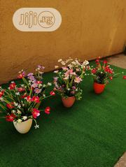 Attractive Mini Cup Flowers For Sale | Landscaping & Gardening Services for sale in Lagos State, Ikeja
