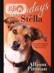 Saturdays With Stella By Allison K. Pittman | Books & Games for sale in Lagos State, Ikeja