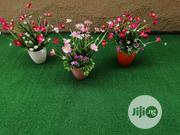 Mini Potted Flower For Studio And Bar Decors | Landscaping & Gardening Services for sale in Lagos State, Ikeja