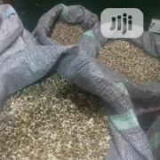 Moringa Seeds, Leave, Powder And Oil   Feeds, Supplements & Seeds for sale in Lagos State, Ilupeju