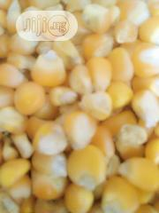 Conr Maize | Feeds, Supplements & Seeds for sale in Lagos State, Ikeja
