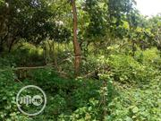 2000sqm Size Of Land With C Of O @ Life Camp FCT   Land & Plots For Sale for sale in Abuja (FCT) State, Durumi