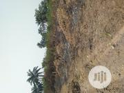 A Plot of Land at Unity Estate | Land & Plots For Sale for sale in Rivers State, Port-Harcourt