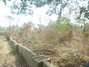 An Affordable Bare Land. For Sale in Illah New Lay-Out. | Land & Plots For Sale for sale in Delta State, Oshimili North