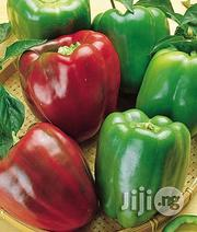 Green (Sweet) Pepper | Meals & Drinks for sale in Abuja (FCT) State, Kubwa