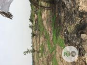 A Plot of Land in Owerri Town Buy and Start Building Immediately | Land & Plots For Sale for sale in Imo State, Owerri