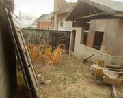 Cheap Land With C of O for Sale in an Estate at Ojodu Ikeja | Land & Plots For Sale for sale in Lagos State, Ikeja