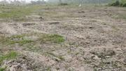 A Plot Of Land at Sacred Heart 2, Ibusa Asaba | Land & Plots For Sale for sale in Delta State, Oshimili North