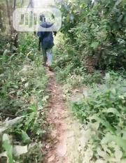Farm Land For Sale | Land & Plots For Sale for sale in Ogun State, Odeda