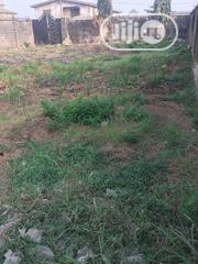 A Full Plot of Land, Fenced Round With Cofo at Ago Okota | Land & Plots For Sale for sale in Lagos State, Isolo