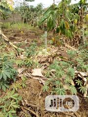 Land For Sale In Ikorodu 3MAR16 | Land & Plots For Sale for sale in Lagos State, Ikeja