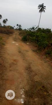 Plot Of Land 100 By 100 | Land & Plots For Sale for sale in Edo State, Benin City