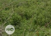 Free From Governmnet Acquisition | Land & Plots For Sale for sale in Lagos State, Ibeju