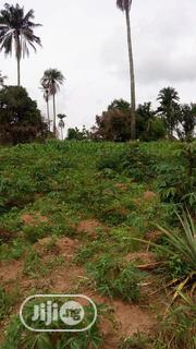 Farmland For Sale | Land & Plots For Sale for sale in Lagos State, Ikeja