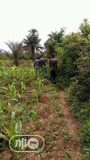 Farmland For Sale In Nigeria | Land & Plots For Sale for sale in Lagos State, Ikeja