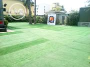 Artificial Grass Installation On Compound By Bethelmendels Nigeria | Landscaping & Gardening Services for sale in Lagos State, Ikeja