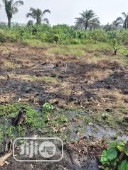 A Plot Of Land 60 X 120 At Igbeoloja | Land & Plots For Sale for sale in Lagos State, Ikorodu