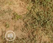 Half Plot At Obadeyi Bus-stop. | Land & Plots For Sale for sale in Lagos State, Ifako-Ijaiye