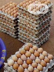 Fresh Eggs For Sell At A Best Price | Meals & Drinks for sale in Ekiti State, Ado Ekiti