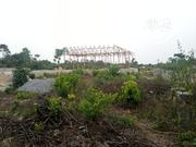 100 by 50 Land for Sale at Shell Farm Jeddo | Land & Plots For Sale for sale in Delta State, Okpe