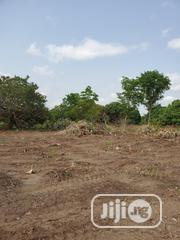 Fertile Farmland In Acres For Sale In Ogbomosho At 300 000. | Land & Plots For Sale for sale in Oyo State, Ori Ire