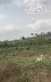 Arable Agric Land In Ogun State   Land & Plots For Sale for sale in Ogun State, Odeda