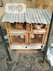 Fowl Or Rabbit Cage | Pet's Accessories for sale in Lagos State, Alimosho