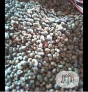 Cashews Seed   Feeds, Supplements & Seeds for sale in Ogun State, Ifo