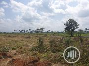 2 100 By 100 Plots Of Land For Sale At Abraka   Land & Plots For Sale for sale in Delta State, Ethiope East