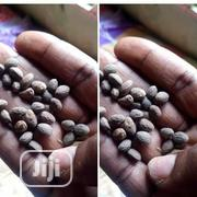 Miracle Wonder Seeds | Vitamins & Supplements for sale in Lagos State, Alimosho