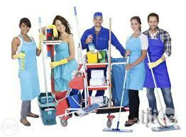 Green Cleaning Service
