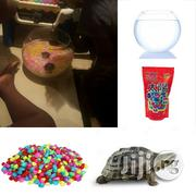 Tortoise Kit Plus One Tortoise | Reptiles for sale in Lagos State