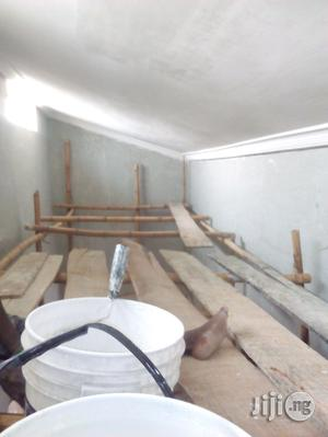 Professional Wall Screeding And Painting