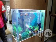 Bespoke Aquarium Construction | Fish for sale in Lagos State, Ajah