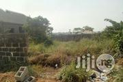 For Sale; Full Plot Of Land, At Peace Estate Baruwa | Land & Plots For Sale for sale in Lagos State, Alimosho
