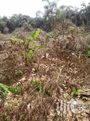 Plots of Land for Sale at Arepo Lagos/Ibadan Express.Price Per Plot.18 | Land & Plots For Sale for sale in Ogun State, Ifo