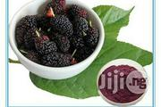 Mulberry Extract 25g | Skin Care for sale in Lagos State, Ojodu