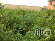 Plot of Dry Land Close to Road Isefun Ayobo | Land & Plots For Sale for sale in Lagos State, Alimosho