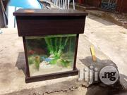 Bespoke Aquarium | Fish for sale in Lagos State, Ikoyi