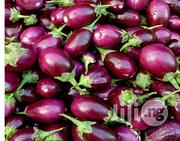 Egg Plant Vegetables | Meals & Drinks for sale in Plateau State, Jos