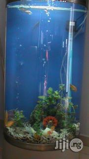 Aquarium And Pet Services | Pet Services for sale in Lagos State, Alimosho