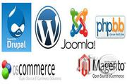 Responsive Wordpress Website | Computer & IT Services for sale in Lagos State, Lagos Island