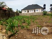 800sqm of Dry and Firm Land at Osonagma Housing Estate, Uyo Akwa Ibom. | Land & Plots For Sale for sale in Akwa Ibom State, Uyo
